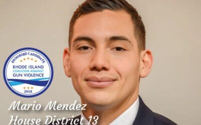 Mario Mendez for House District 13
