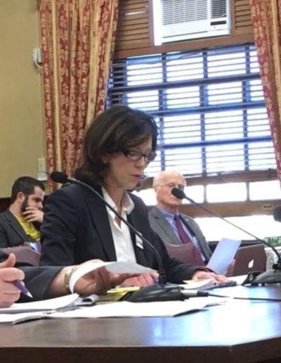 March 2018 - RICAGV Board Member Julia Wyman Delivers Expert Testimony at RI Senate Hearings, RI State House