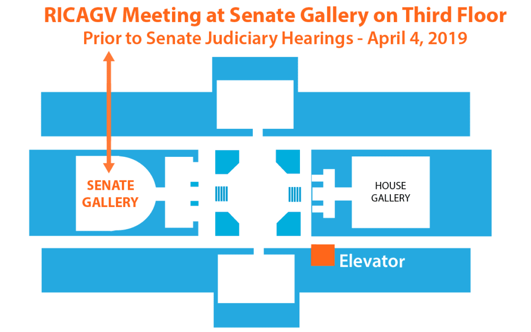 Wear Orange to the Senate Judiciary Hearings